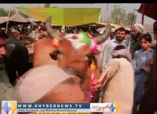Khyber Watch ( Ep # 297 - 05-10-2014 )