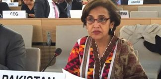 Pakistan's resolve to fight terrorism has not diminished: Tehmina