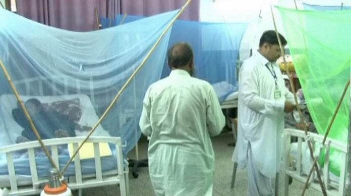 169 more patients diagnosed with dengue fever in KP