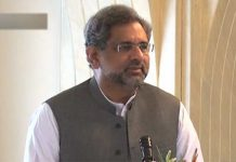Institutions should work in their constitutional domain: PM Abbasi