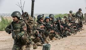 Afghan forces' fresh operations kill 36 militants in Kandahar