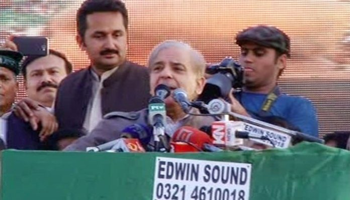 Imran Khan's politics revolves around lies, criticism against institutions: Shehbaz Sharif