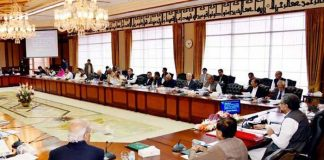 Federal cabinet decides to observe Kashmir Solidarity Day on Friday