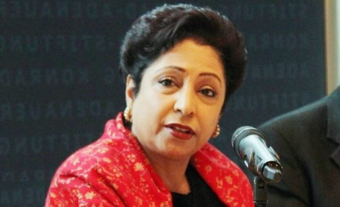 Pakistan successfully dislodges terrorist sanctuaries: Maleeha