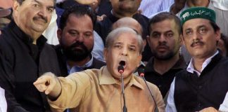 Shehbaz Sharif's plea for recount of NA-249 votes rejected