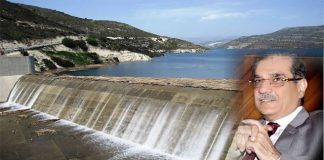 KP govt officers donate three-day salary for Bhasha, Mohmand dams
