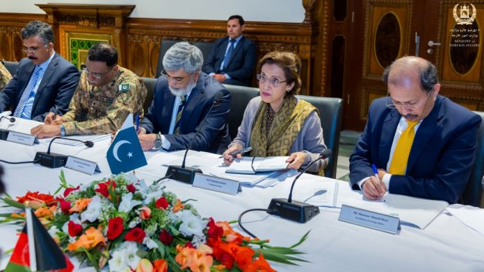 Pakistan, Afghanistan vow joint efforts to end Afghan conflict