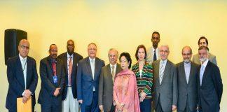 OIC envoys express solidarity with Kashmiris: Maleeha