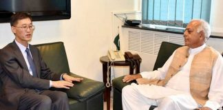 China offers cooperation to Pakistan in oil and gas pipeline