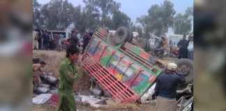 Seven killed in road accidents in Punjab