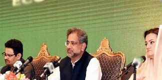 Selected govt failed to control inflation, overcome economic crisis: Abbassi