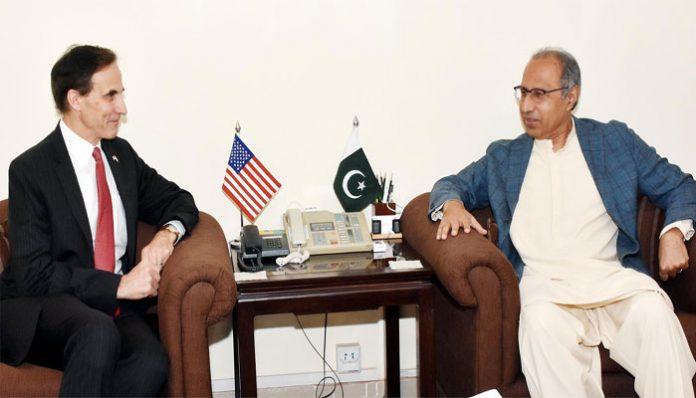 US Ambassador Paul Jones meets Finance Adviser Dr Hafeez Shaikh
