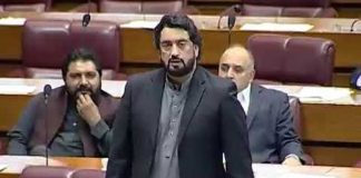 Corrupt elements to face accountability at all costs: Shehryar Afridi