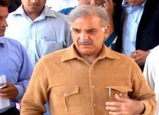 LHC extends Shehbaz Sharif's interim bail till July 7
