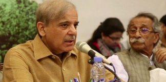 Strict action against senators who defected in no-confidence vote: Shehbaz