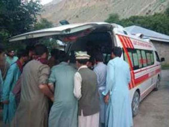 Seven killed, nine injured in road accident in Chitral