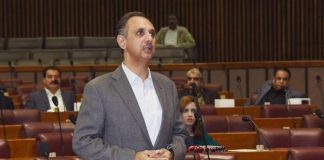 Govt committed to provide cheap electricity to consumers: NA told