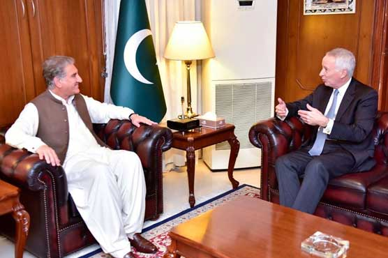 India committing human rights violations in occupied Kashmir: FM Qureshi
