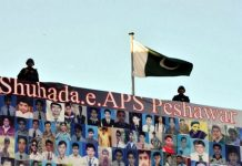 Peshawar APS attack inquiry commission completes probe