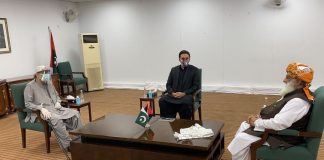 PPP, JUI-F agree to work together for Pakistan's integrity and survival