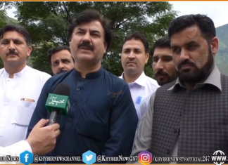 Nawaz Sharif has fled and Maulana Fazl Rehman failed,Shoukat yousafzai