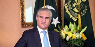 Pakistan will stand with Kashmiris till final victory: Shah Mehmood Qureshi